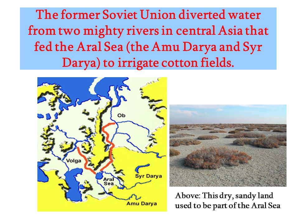 The former Soviet Union diverted water from two mighty rivers in central Asia that fed the Aral Sea (the Amu Darya and Syr Darya) to irrigate cotton fields.