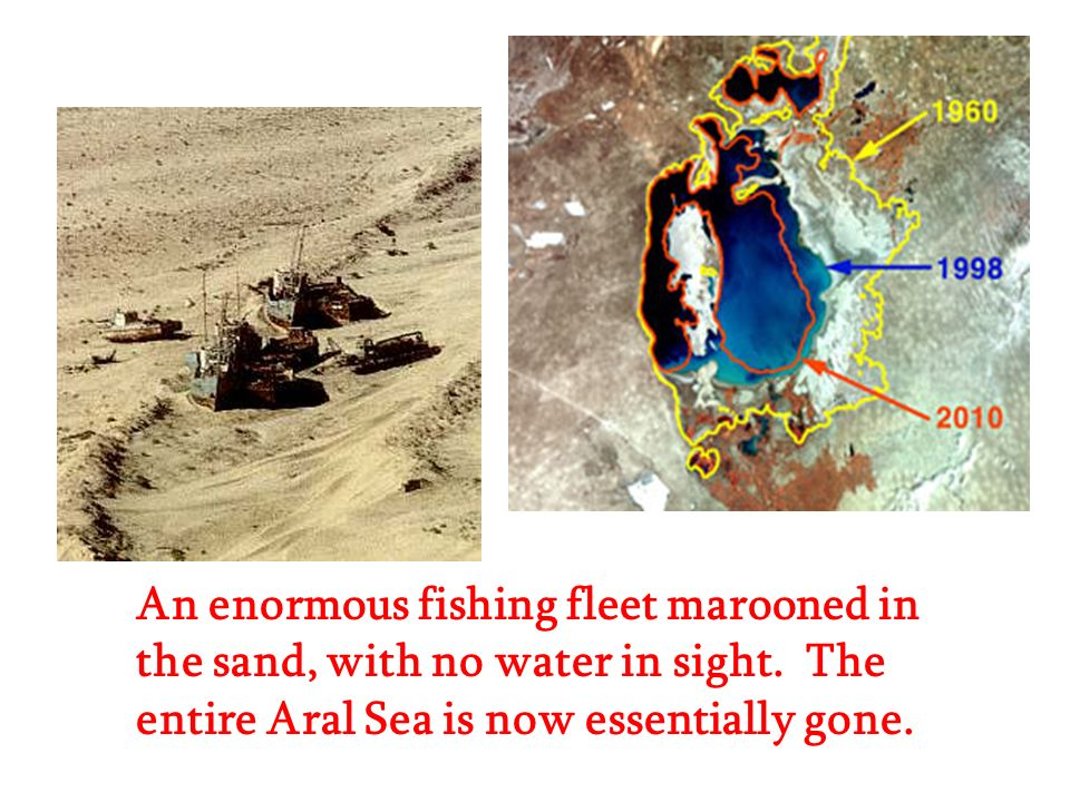 An enormous fishing fleet marooned in the sand, with no water in sight