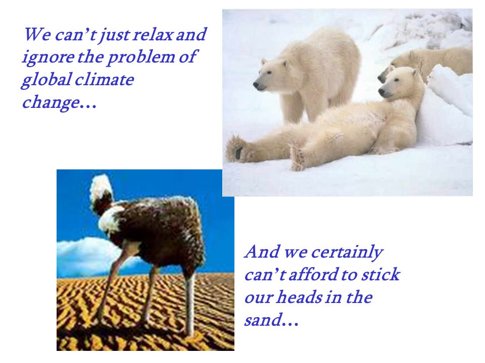 We can't just relax and ignore the problem of global climate change…