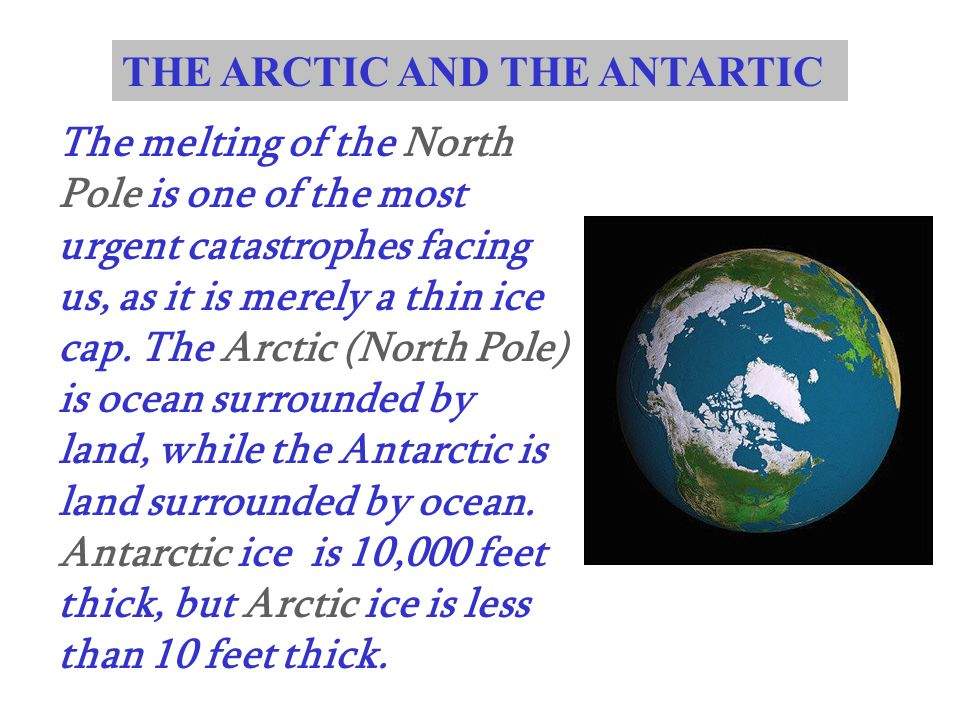 THE ARCTIC AND THE ANTARTIC