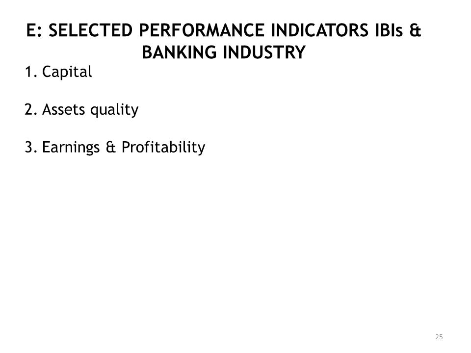 E: SELECTED PERFORMANCE INDICATORS IBIs & BANKING INDUSTRY