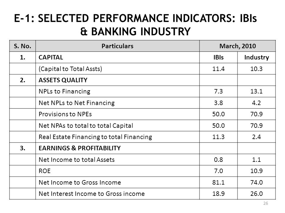 E-1: SELECTED PERFORMANCE INDICATORS: IBIs & BANKING INDUSTRY