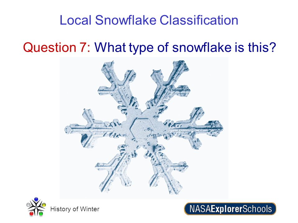 Question 7: What type of snowflake is this