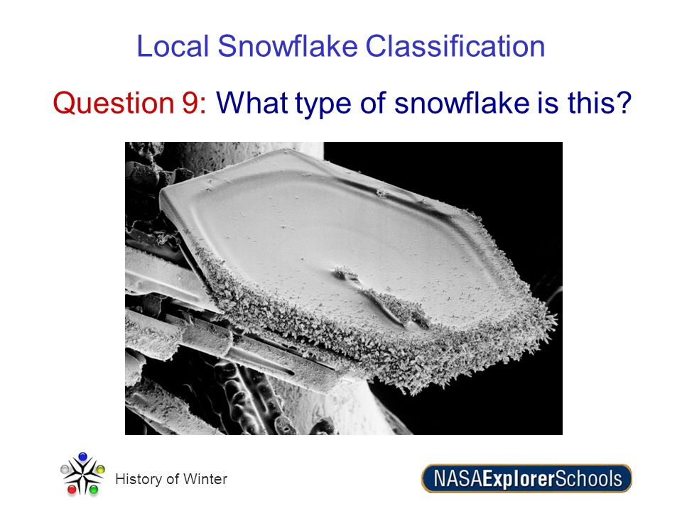 Question 9: What type of snowflake is this