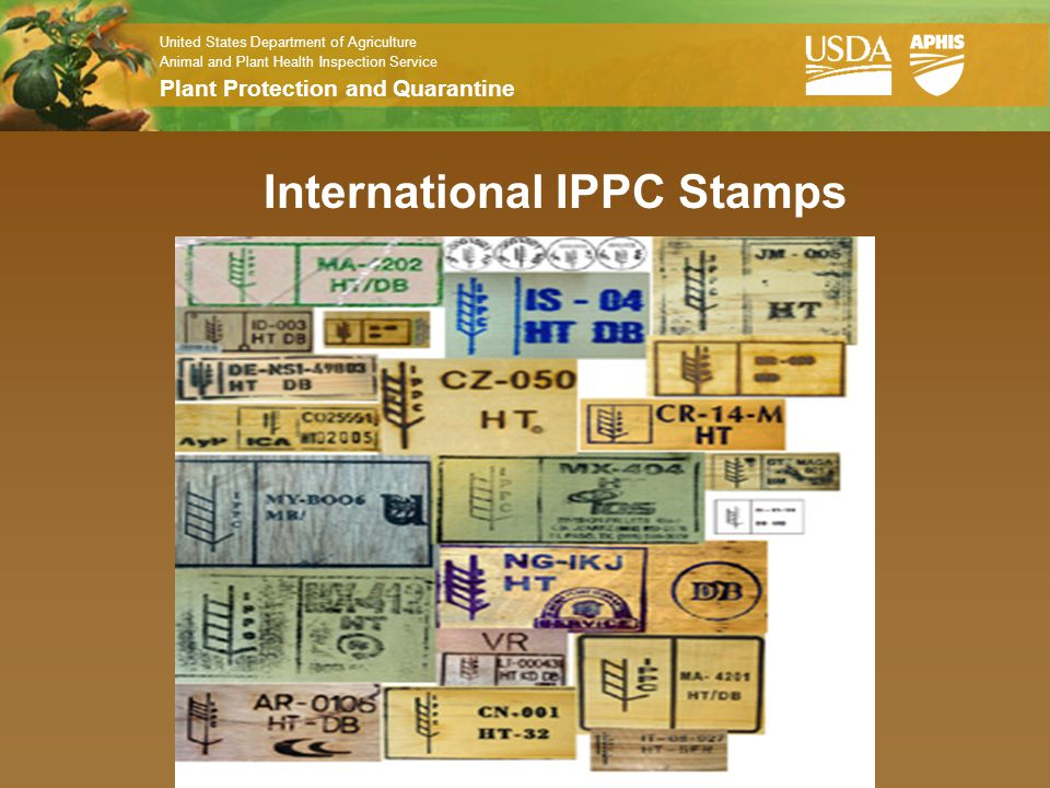 International IPPC Stamps