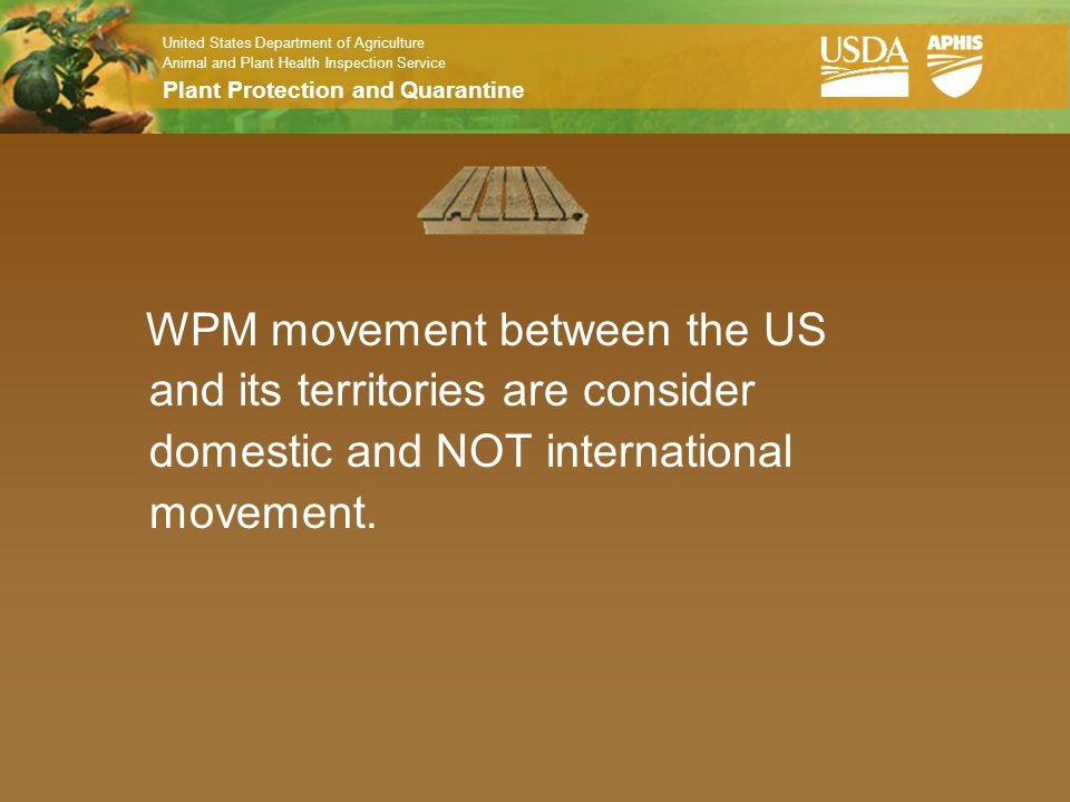 WPM movement between the US and its territories are consider domestic and NOT international movement.