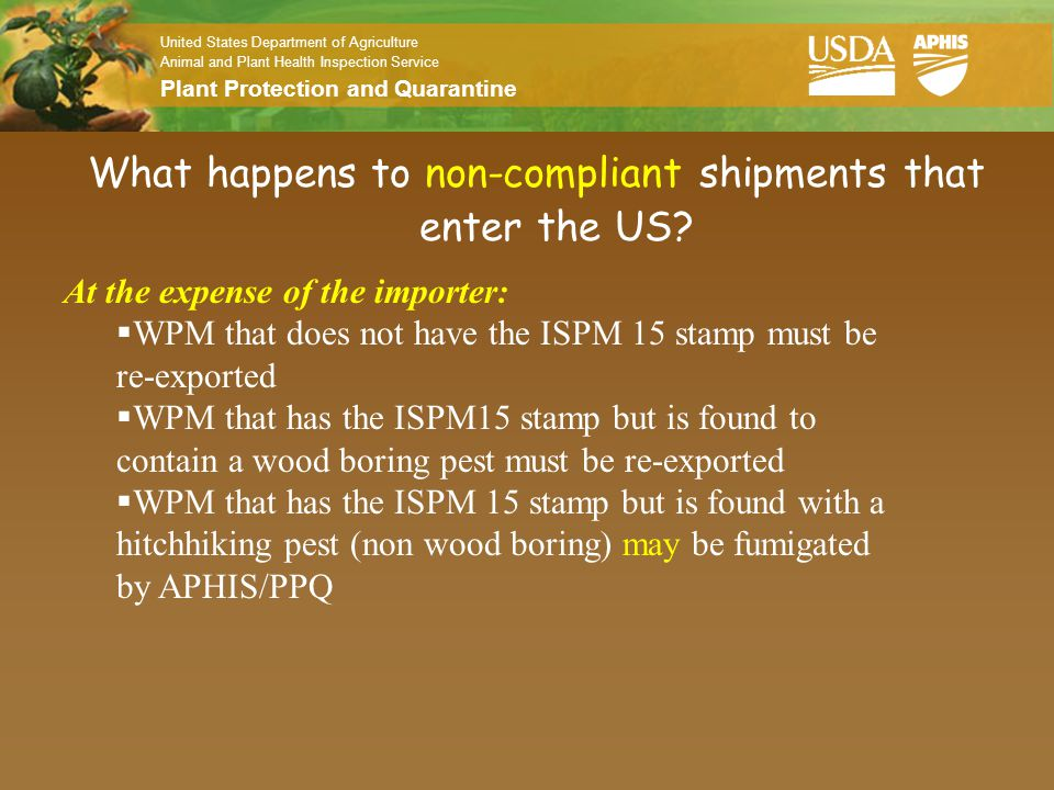 What happens to non-compliant shipments that enter the US