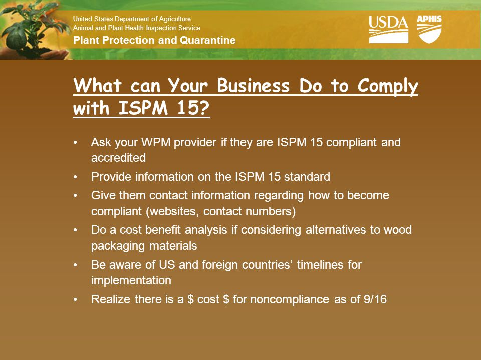 What can Your Business Do to Comply with ISPM 15