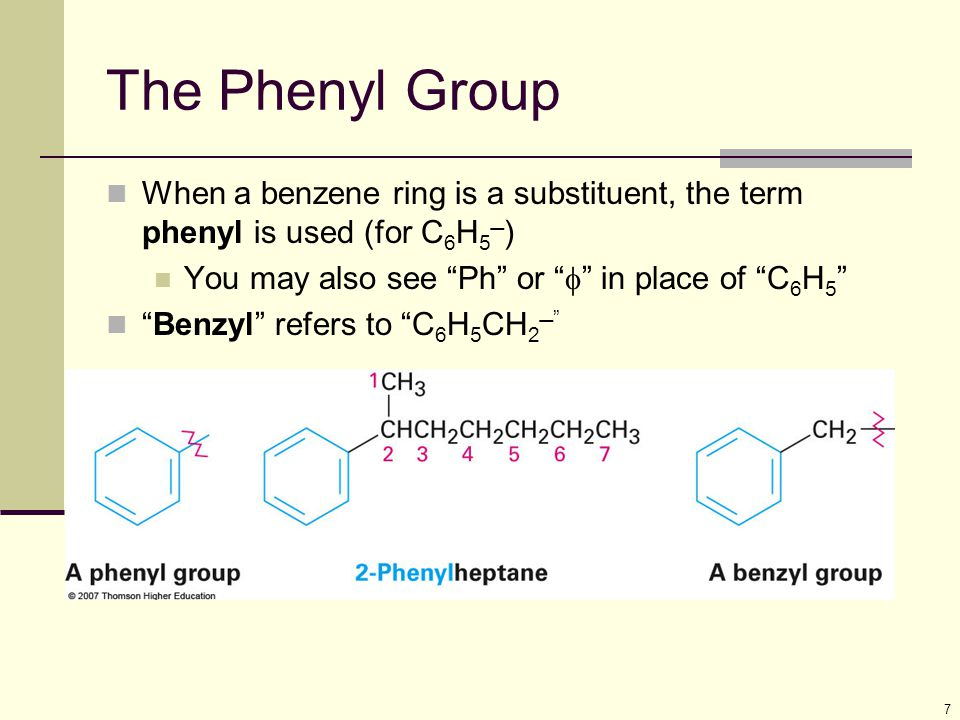 The Phenyl Group When a benzene ring is a substituent, the term phenyl is used (for C6H5) You may also see Ph or f in place of C6H5