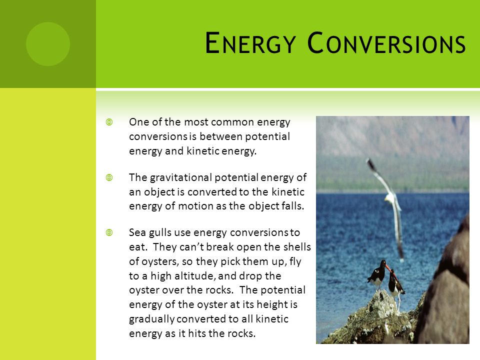 Energy Conversions One of the most common energy conversions is between potential energy and kinetic energy.