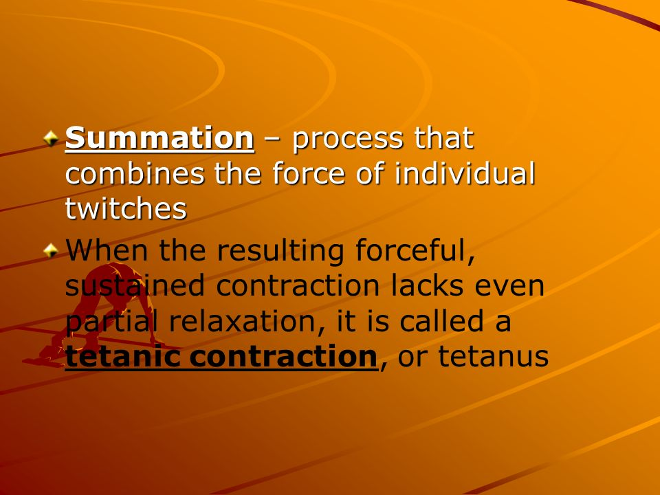 Summation – process that combines the force of individual twitches