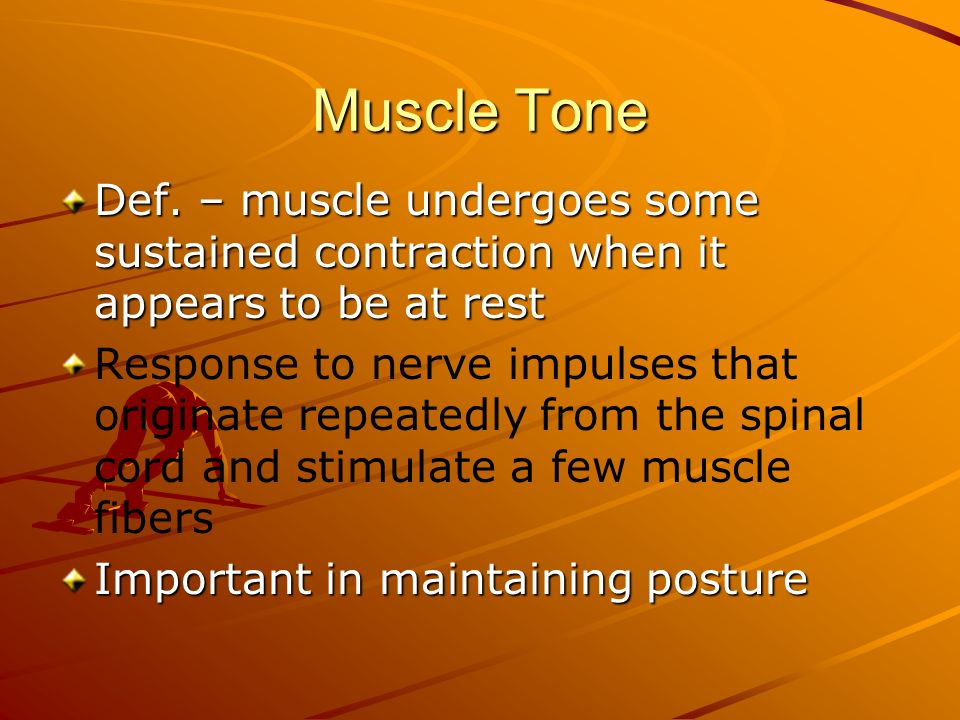 Muscle Tone Def. – muscle undergoes some sustained contraction when it appears to be at rest.