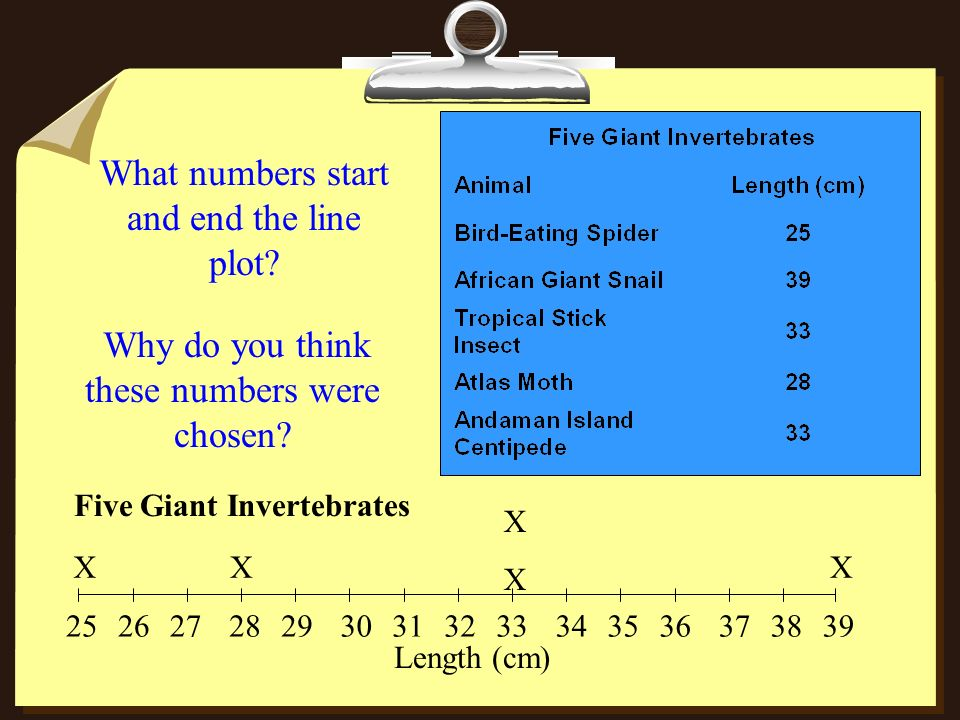What numbers start and end the line plot