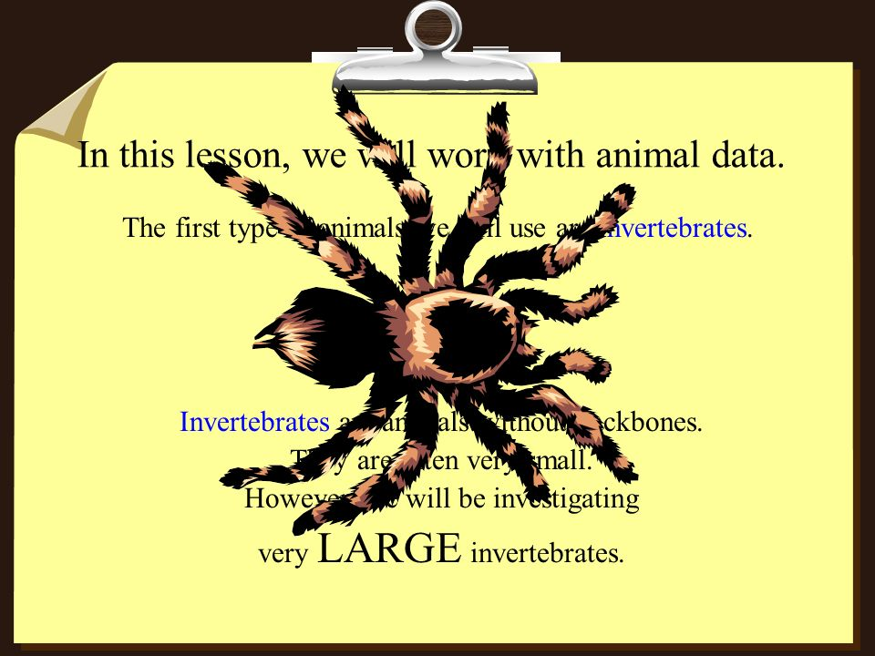 In this lesson, we will work with animal data.