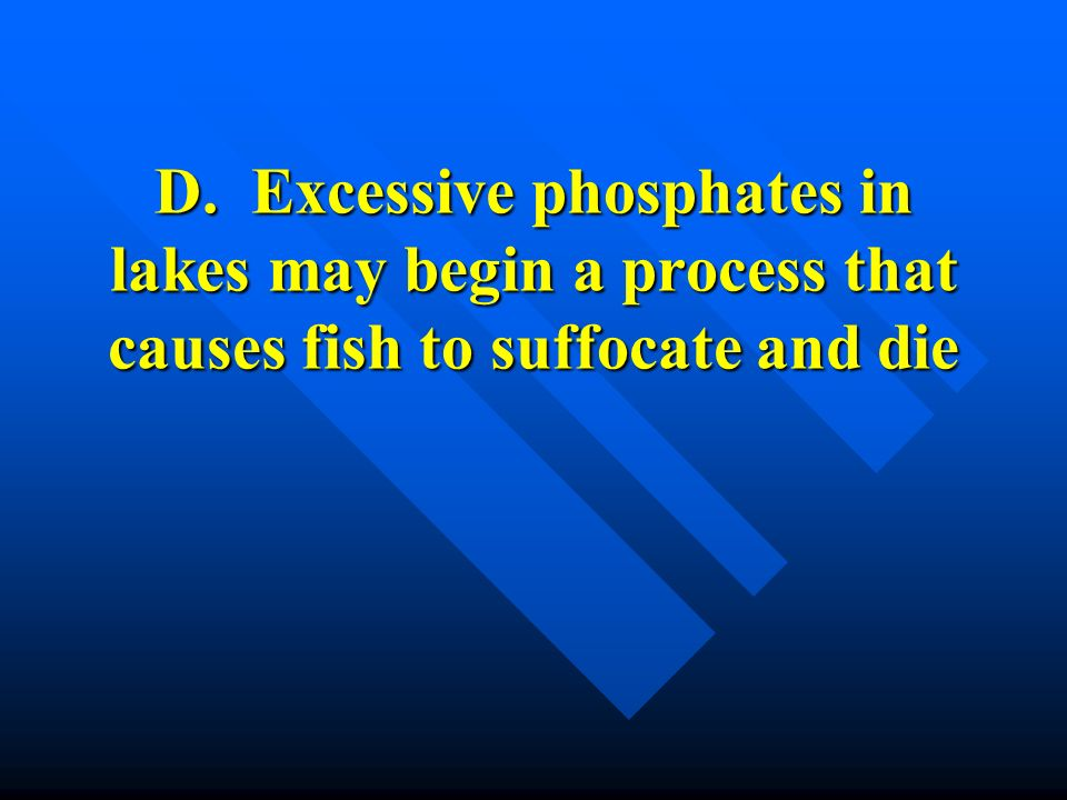 D. Excessive phosphates in lakes may begin a process that causes fish to suffocate and die