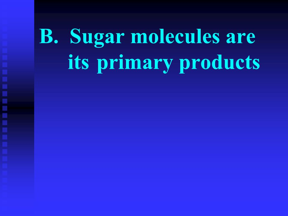 B. Sugar molecules are its primary products