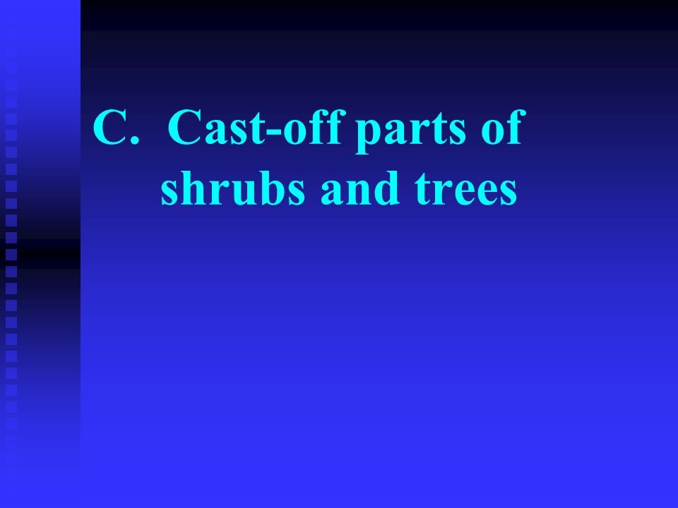 C. Cast-off parts of shrubs and trees