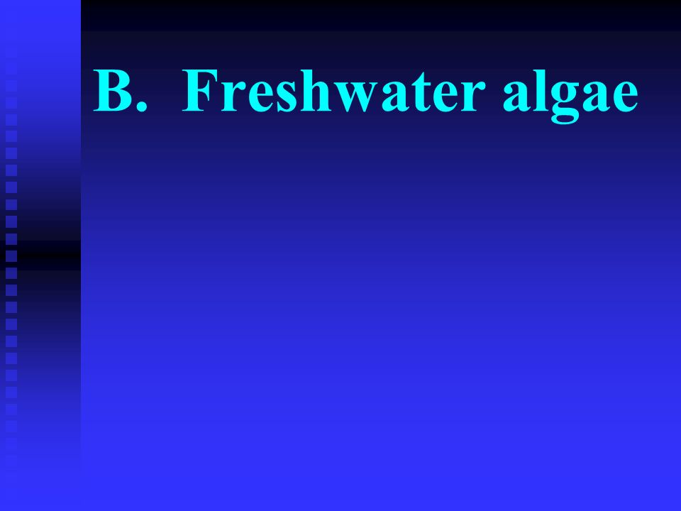 B. Freshwater algae