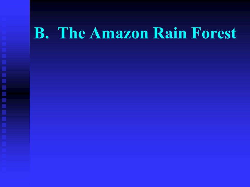 B. The Amazon Rain Forest