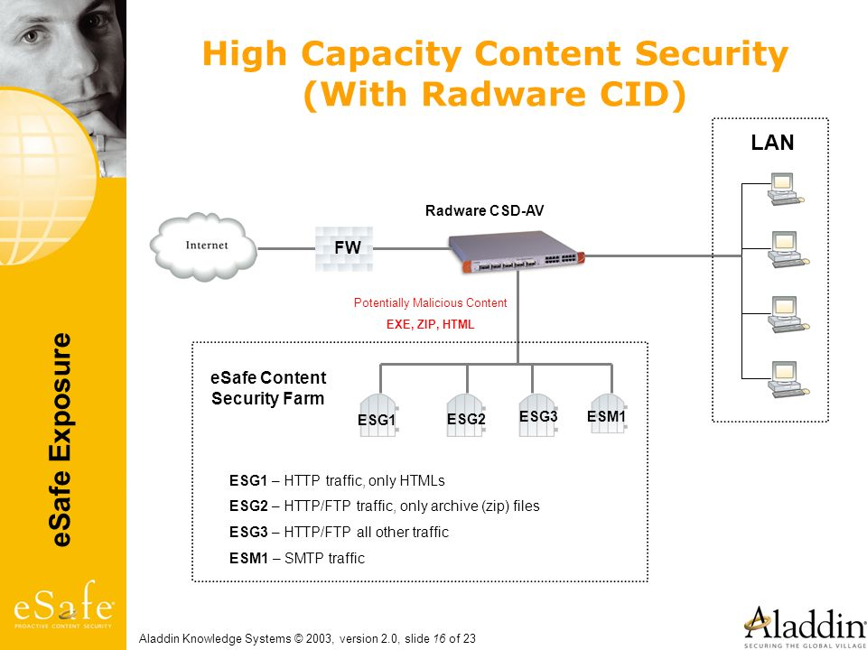 High Capacity Content Security (With Radware CID)