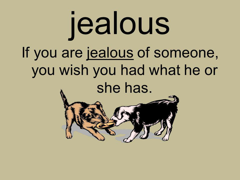 If you are jealous of someone, you wish you had what he or she has.