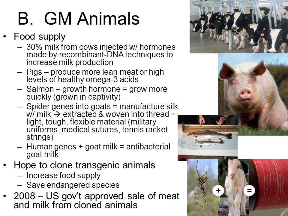 B. GM Animals Food supply Hope to clone transgenic animals