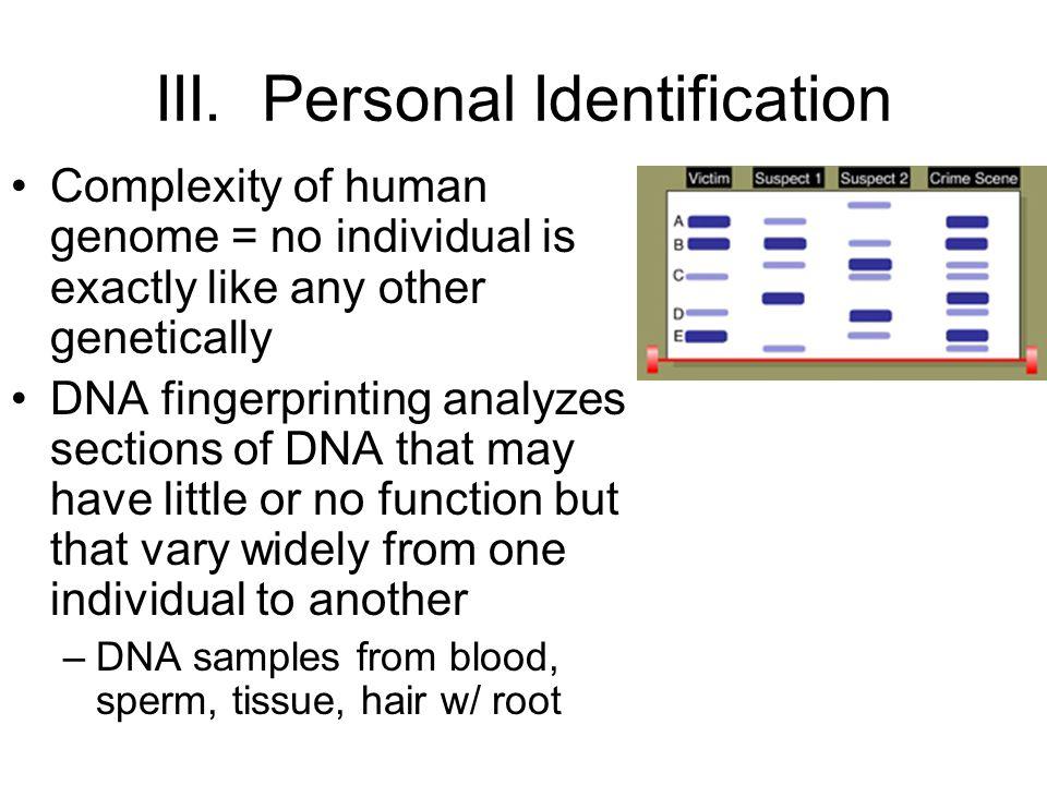III. Personal Identification