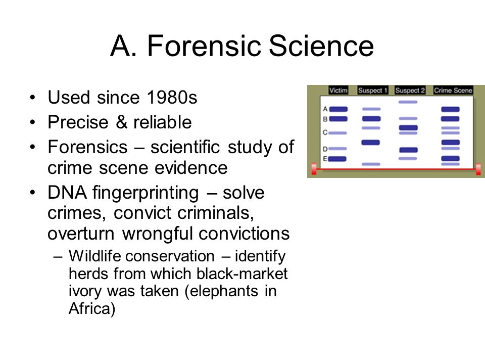 A. Forensic Science Used since 1980s Precise & reliable