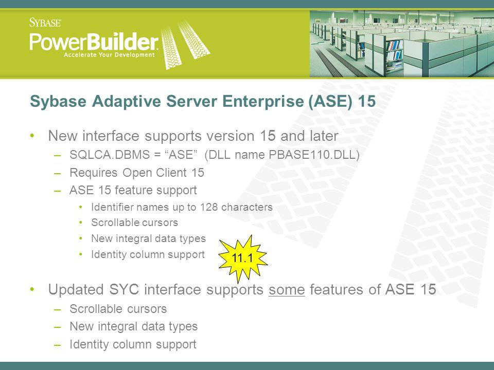 Sybase Adaptive Server Enterprise (ASE) 15