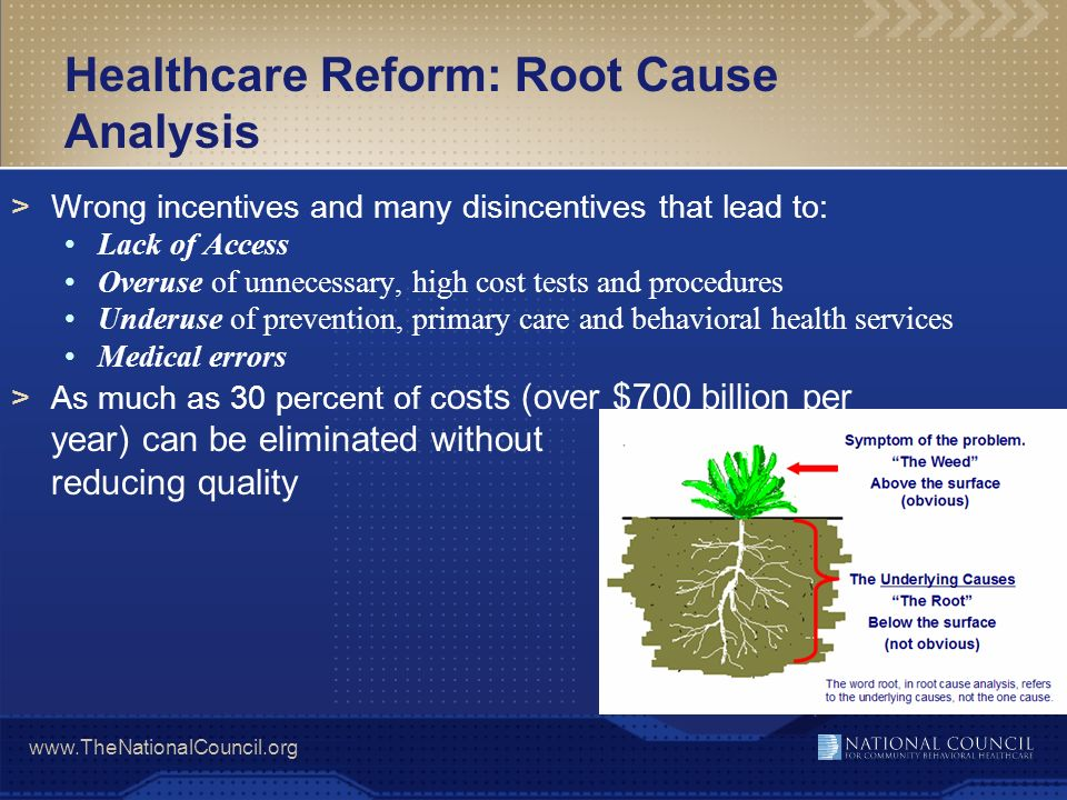 Healthcare Reform: Root Cause Analysis