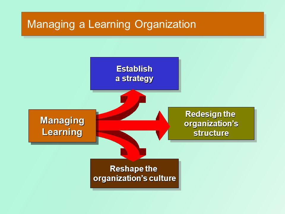 Managing a Learning Organization