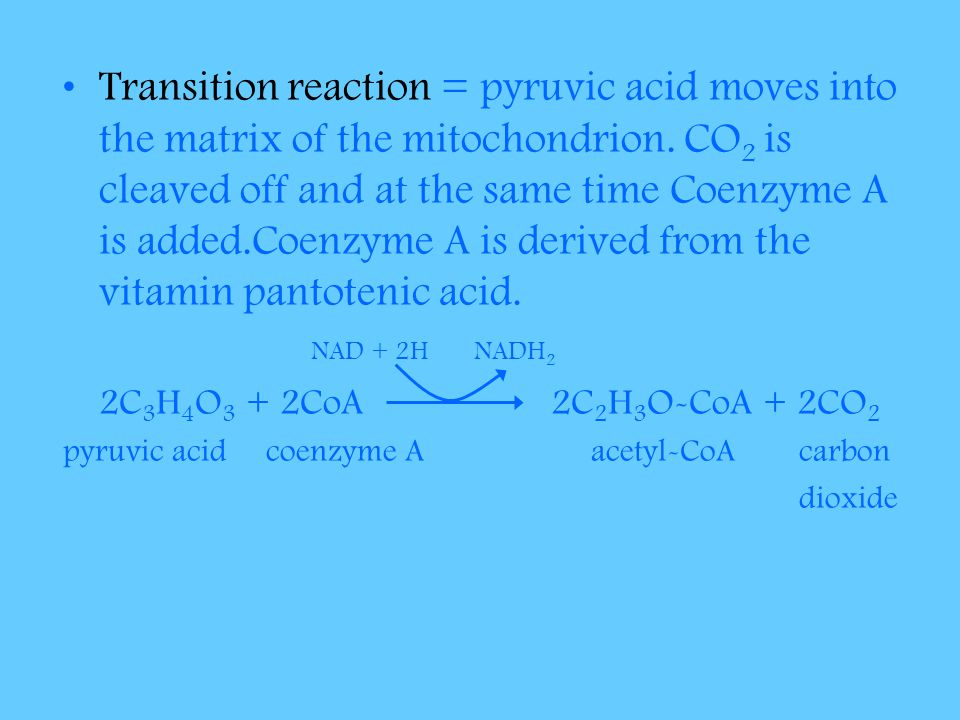 Transition reaction = pyruvic acid moves into the matrix of the mitochondrion. CO2 is cleaved off and at the same time Coenzyme A is added.Coenzyme A is derived from the vitamin pantotenic acid.