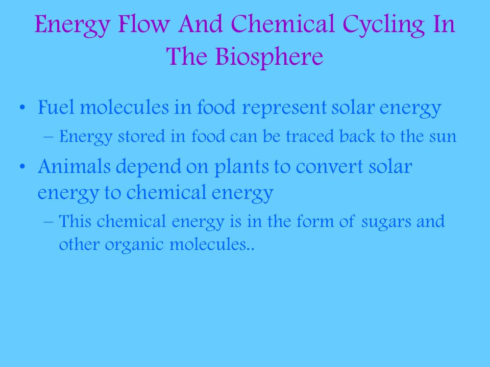 Energy Flow And Chemical Cycling In The Biosphere