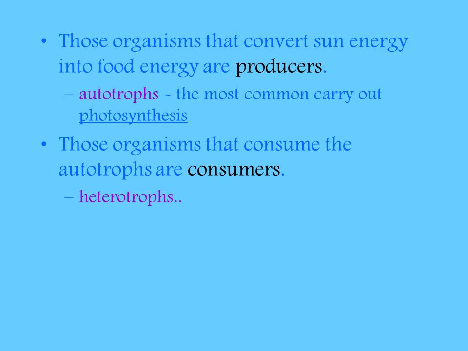 Those organisms that consume the autotrophs are consumers.