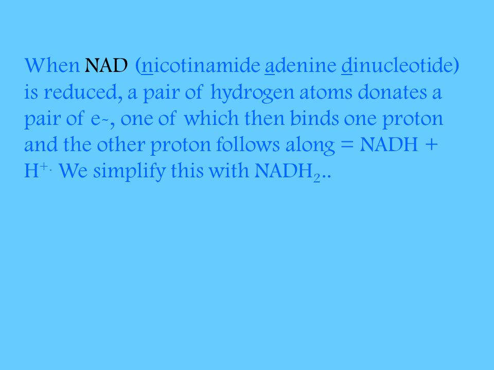 When NAD (nicotinamide adenine dinucleotide) is reduced, a pair of hydrogen atoms donates a pair of e-, one of which then binds one proton and the other proton follows along = NADH + H+.