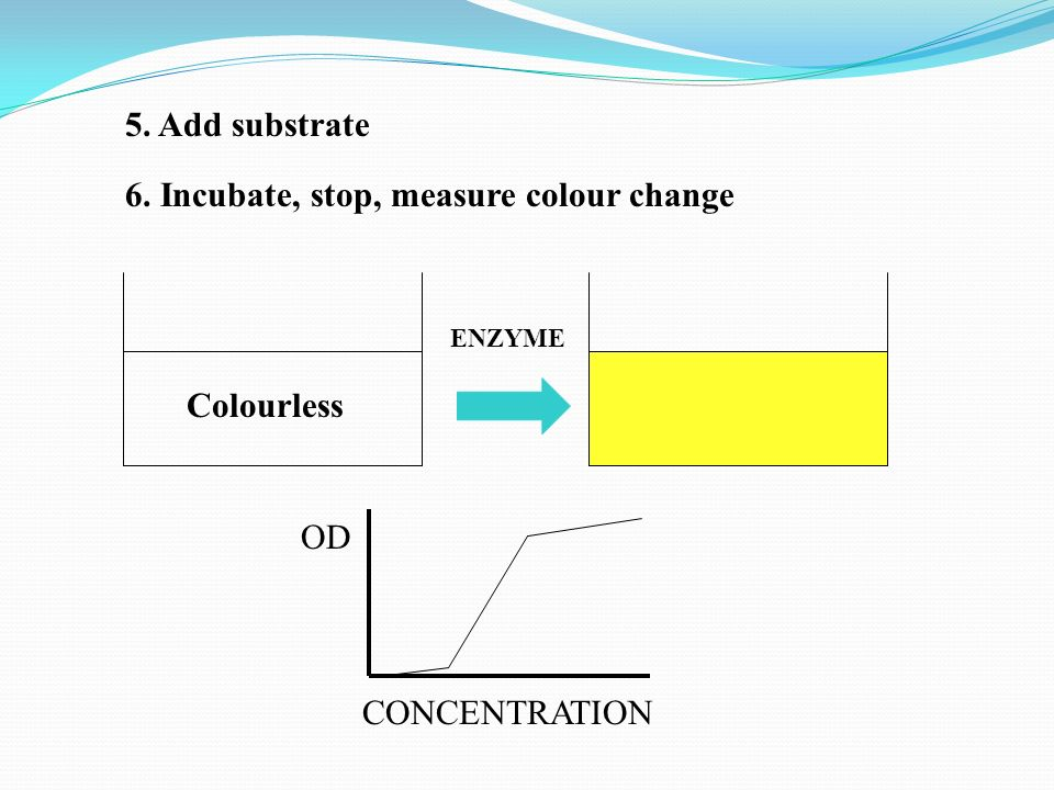 6. Incubate, stop, measure colour change