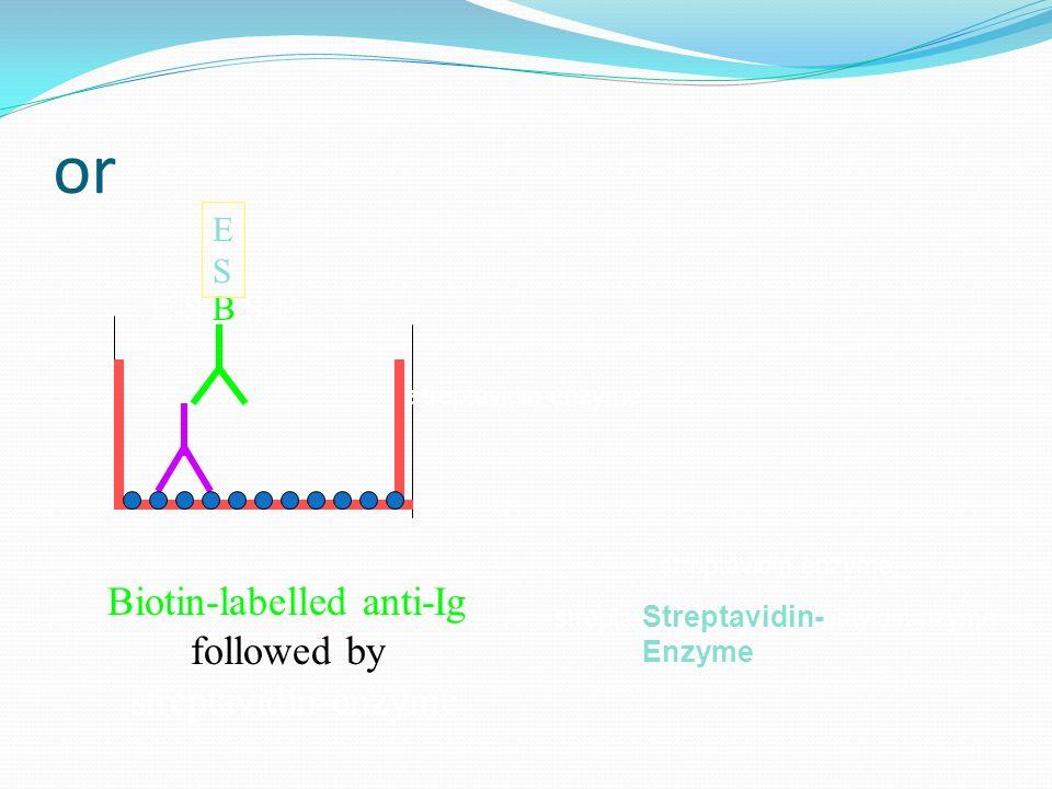 Biotin-labelled anti-Ig
