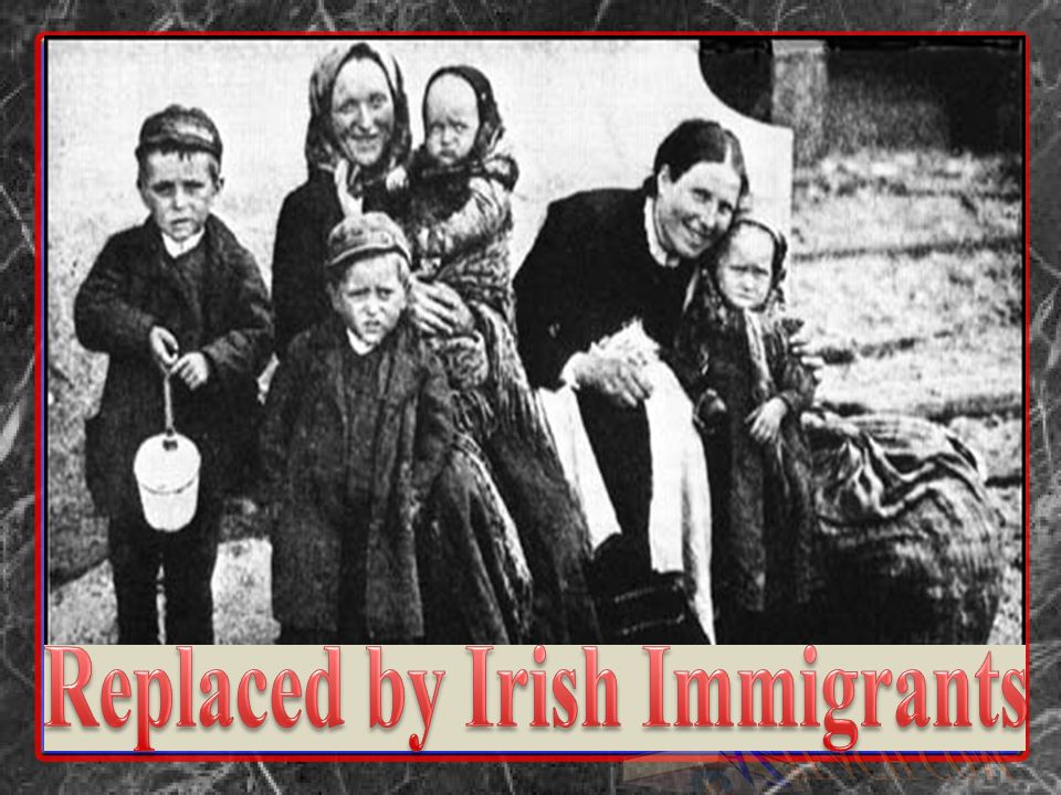 Replaced by Irish Immigrants