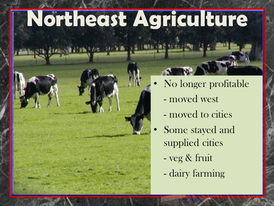 Northeast Agriculture
