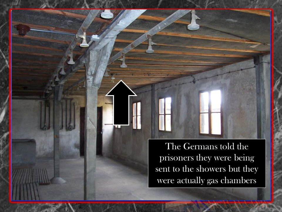 The Germans told the prisoners they were being sent to the showers but they were actually gas chambers