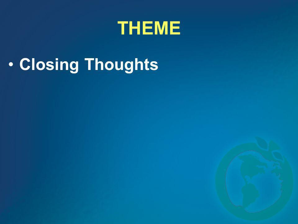 THEME Closing Thoughts