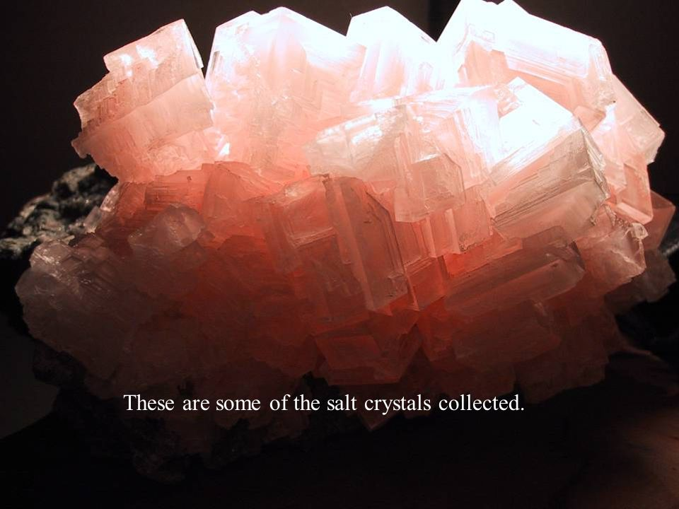 These are some of the salt crystals collected.