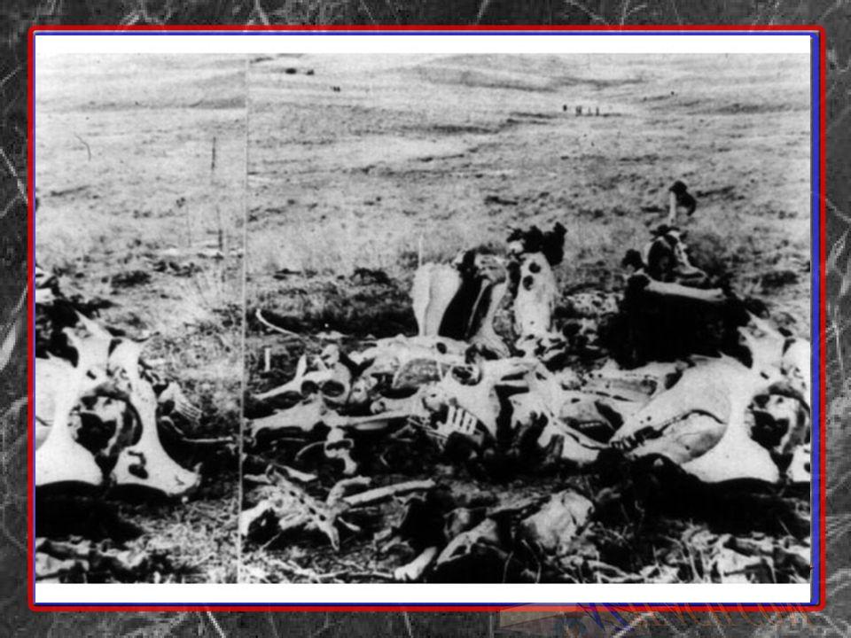19_19.jpg Scene of Custer s last stand