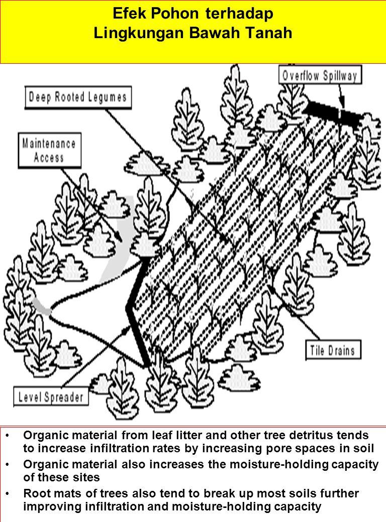 Lingkungan Bawah Tanah