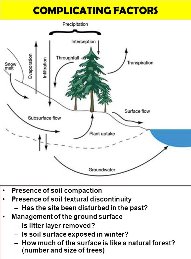 COMPLICATING FACTORS Presence of soil compaction