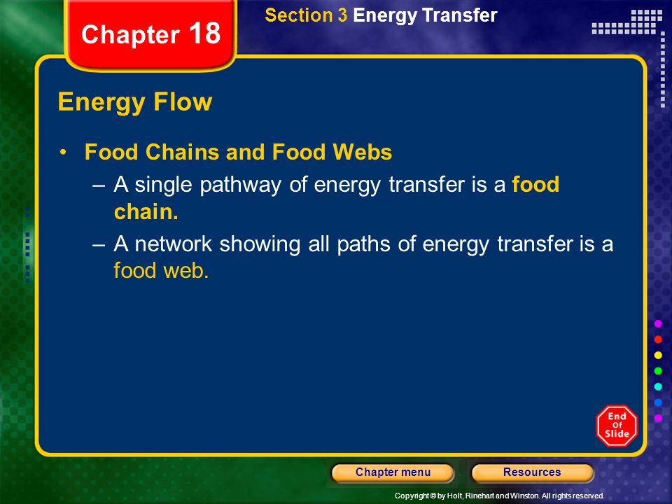 Chapter 18 Energy Flow Food Chains and Food Webs