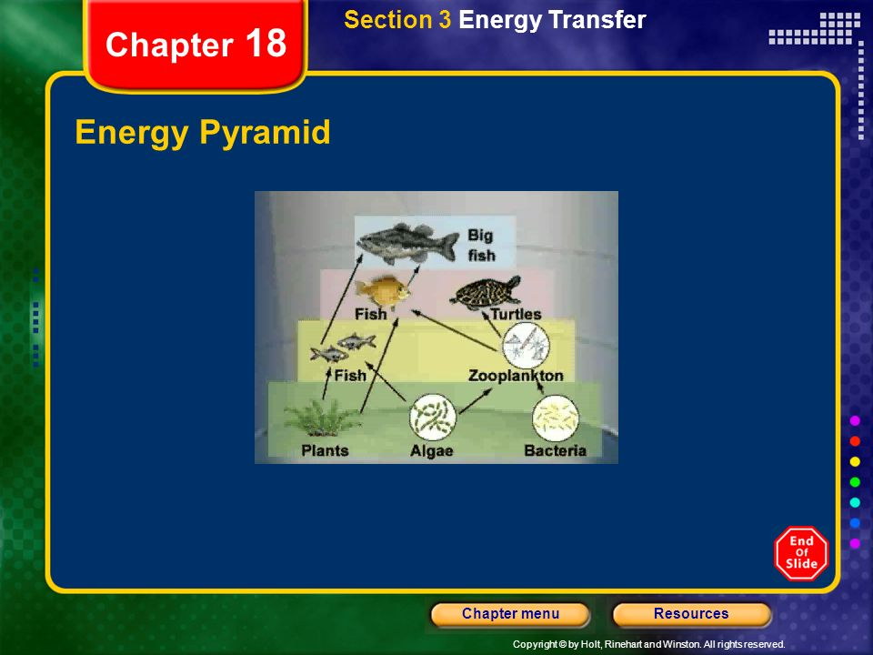 Section 3 Energy Transfer