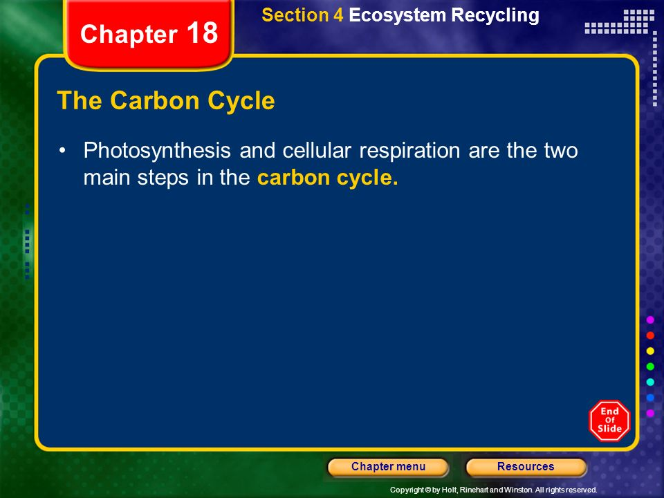 Chapter 18 The Carbon Cycle