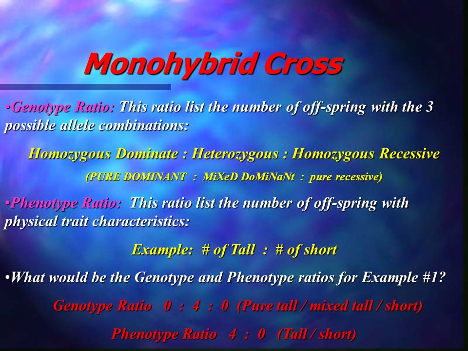Monohybrid Cross Genotype Ratio: This ratio list the number of off-spring with the 3 possible allele combinations: