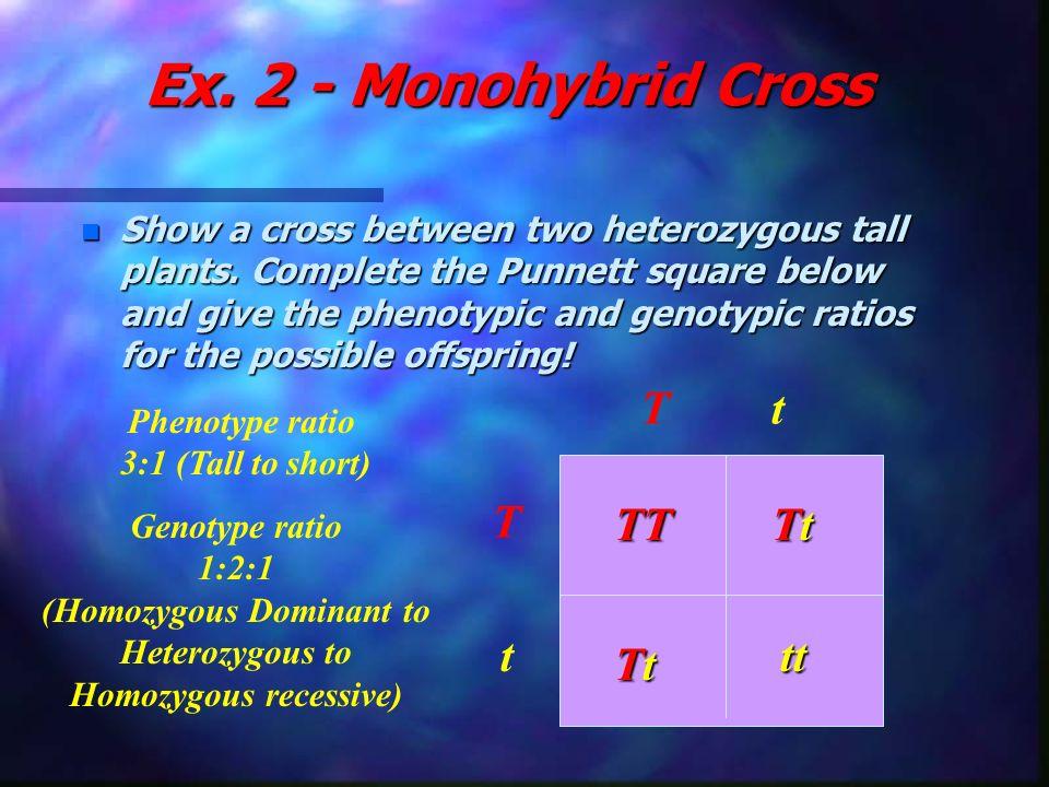 (Homozygous Dominant to Heterozygous to Homozygous recessive)
